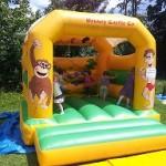 bouncy bugs